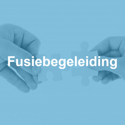 accountancy-fusiebegeleiding